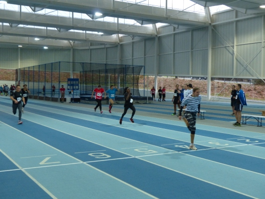 sprint1_site